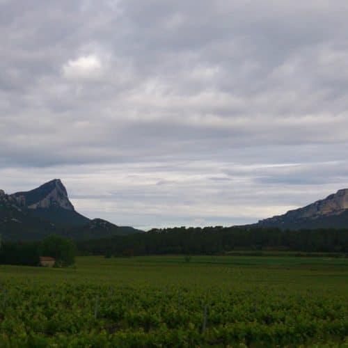 Entdecken Sie den Pic Saint Loup mit dem Abenteuerkurs Moniteurs du Gard