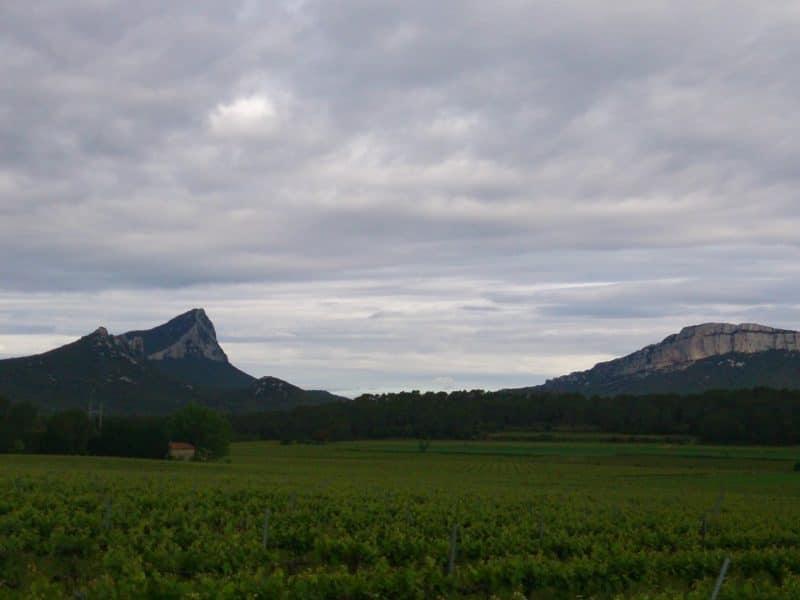 Via Aventura du Pic Saint Loup